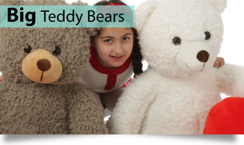 Big Teddy Bears
