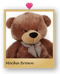 6-foot-life-size-teddy-bear-giant-mocha-brown-plush-teddy-bear-sunny-cuddles-close-up-09.png