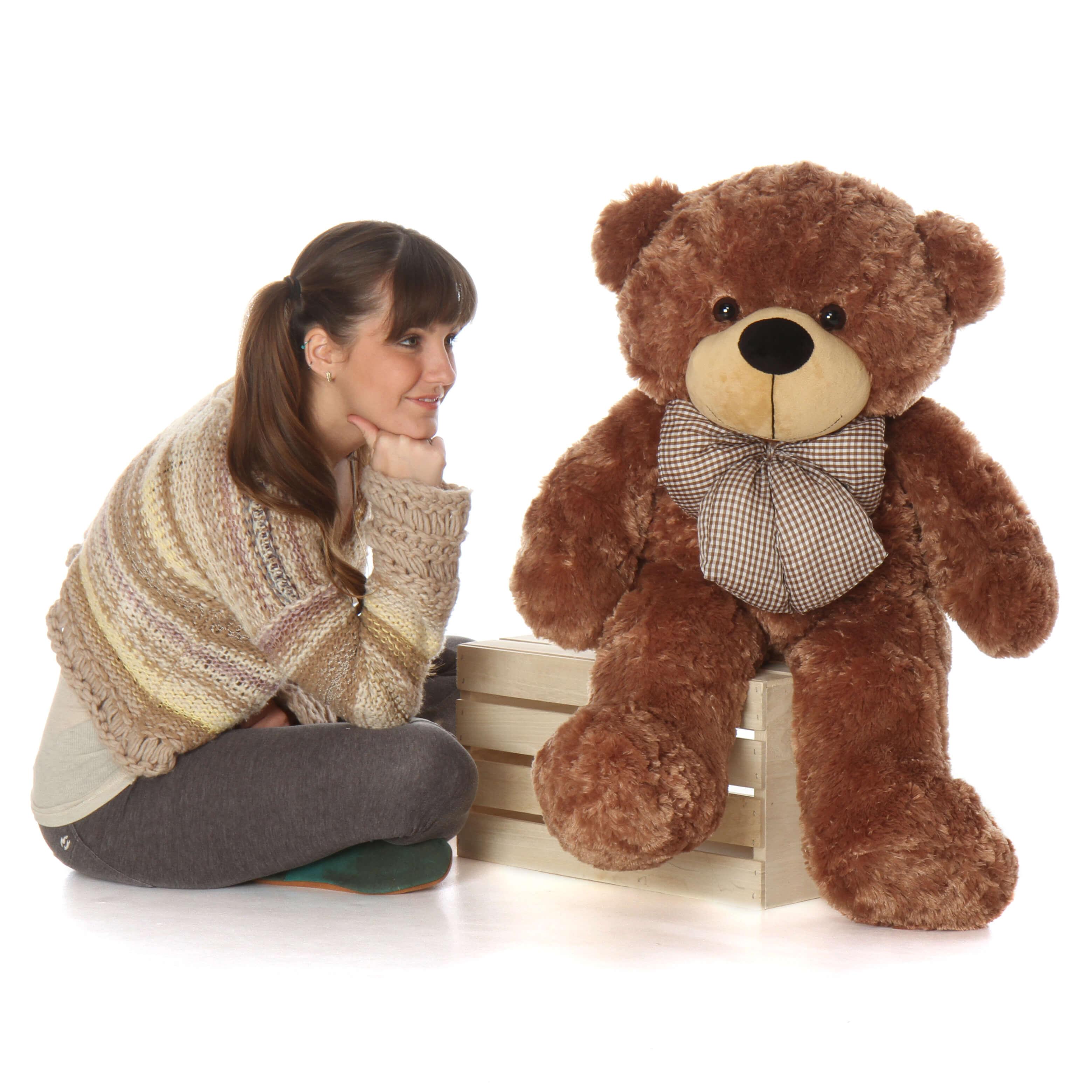 cutest-over-38in-sunny-cuddles-mocha-brown-teddy-bear-1.jpg