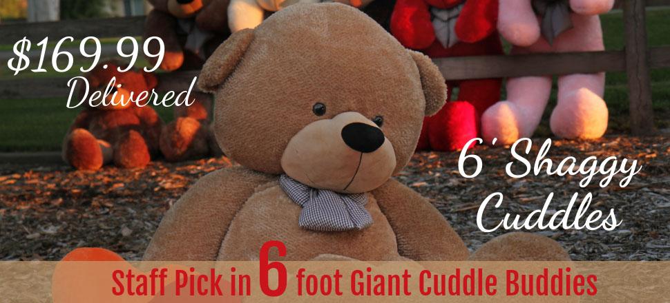 staff-pick-in-6-foot-giant-teddy-cuddle-buddies.jpg