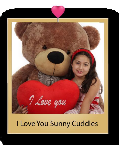 sunny-cuddles-giant-mocha-teddy-bear-02.png